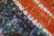 Tafelkleed 127 x 225cm